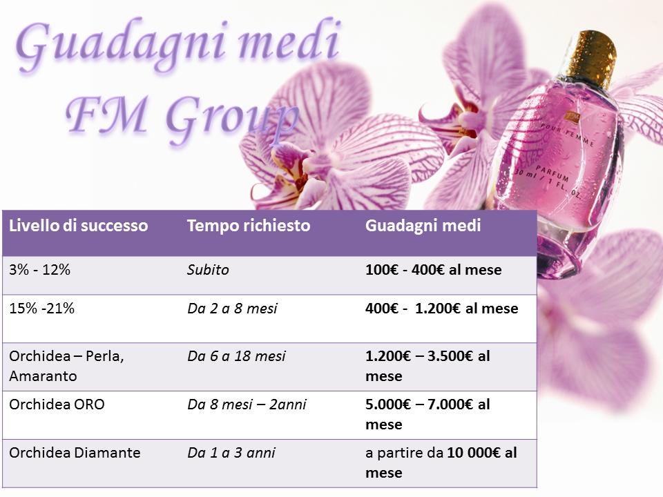 FMGroup_guadagni_medi